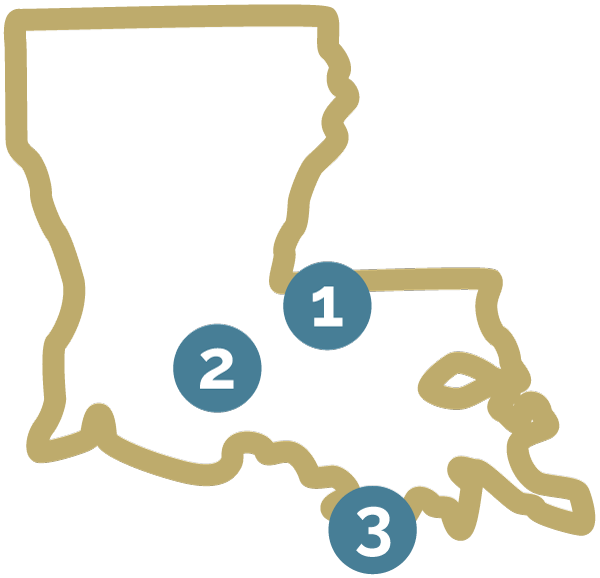 Louisiana map with numbers