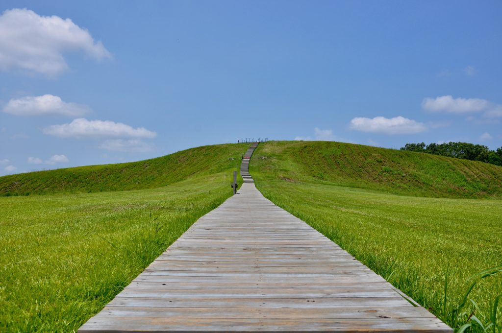 Image of Mound A at Poverty Point.
