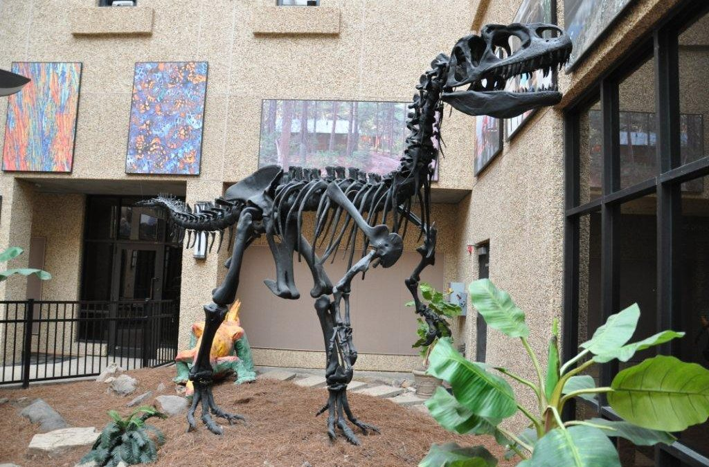 On the Hunt for Dinosaurs…and a Hike at Lake Martin