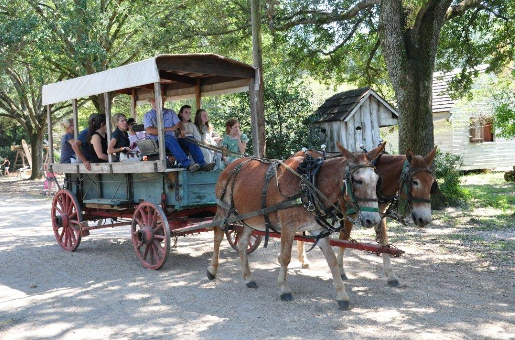 Harvest Days at the Rural Life Museum