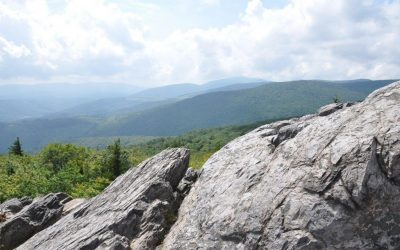 Vacation Time: North to the Smokies and DC