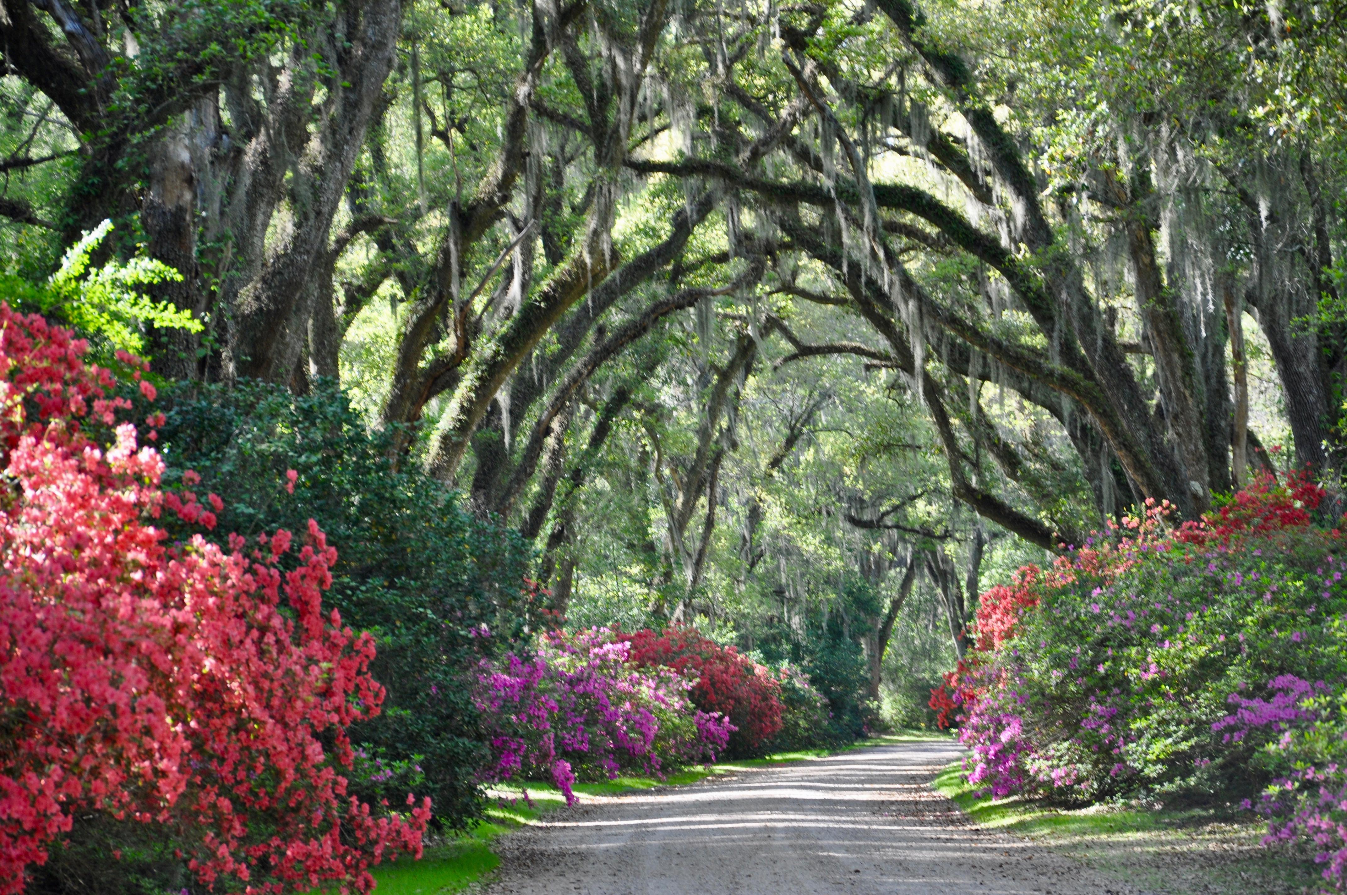 Afton Villa Gardens,  St. Francisville