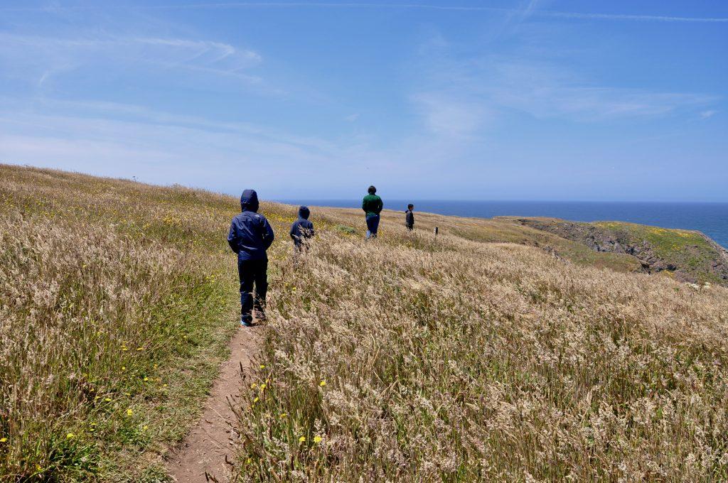 People walking to coast view at Navarro Point